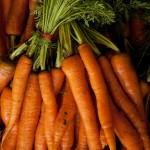Zanahoria tipo Imperator
